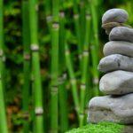 Śliczny ,a także miły dla oczu ogród to zasługa wielu godzin spędzonych  w jego zaciszu w trakcie pielegnacji.